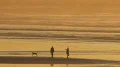 People Playing with Dog at Beach Stock Footage