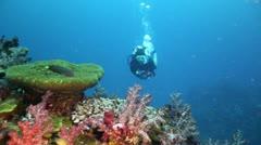 Scuba diver swimming toward camera - stock footage