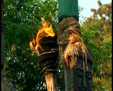 Tiki torch V1 - PAL Stock Footage