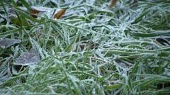 Meadow - frost Stock Footage