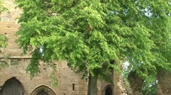 Castle Ruins and Gardens Stock Footage