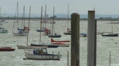 Many Boats Moored Stock Footage