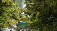 Stock Video Footage of lush rainforest waterfall