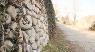People Walking Dog on Cobble Stone Walk Way (2) Stock Footage