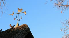 Weather Vane Morning 4 Stock Footage