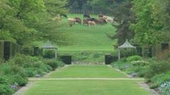 Symmetrical Garden Stock Footage