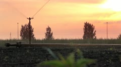 Irrigation of the field Stock Footage