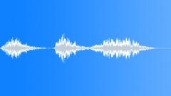Great Kiskadee bird 01 Sound Effect