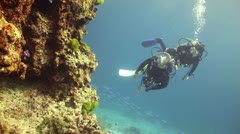 Scuba divers looking at coral reef Stock Footage