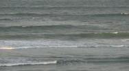 Waves, Dusk Stock Footage