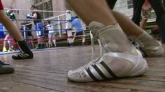 Boxers in training Stock Footage