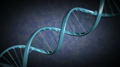 A strand of DNA rotates as the camera moves along it Stock Footage
