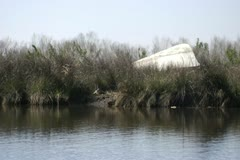 Overturned, abandoned and destroyed small boat from hurricane katrina Stock Footage