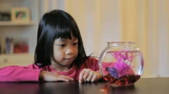 Proud Girl Feeds Her Betta Fish Stock Footage