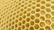 Stock Video Footage of Honeycomb