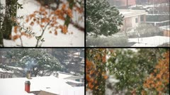 Snowfall - Multiscreen - Sequence Stock Footage