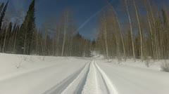 Snowmobile winter forest trail P HD 0007 Stock Footage