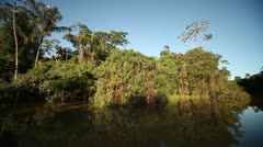 Amazon River and Rainforest - stock footage