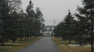 Tracking Through Tree-lined Cemetary Road Stock Footage