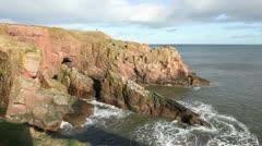 Seaton cliffs near Arbroath Angus Scotland Stock Footage