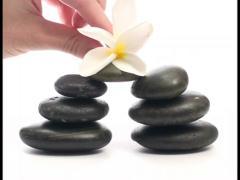 Frangipani flower on Zen stones V1 - PAL Stock Footage