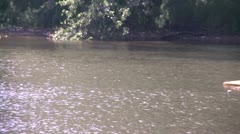 Kayaker on a secluded part of a river (3 of 4) Stock Footage