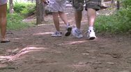 Stock Video Footage of A small group hiking down a trail (2 of 2)