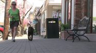 Stock Video Footage of Woman walking her Chocolate Lab down the sidewalk (1 of 2)