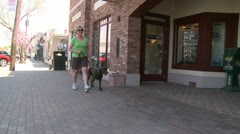 Woman walking her Chocolate Lab down the sidewalk (2 of 2) Stock Footage