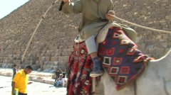 Pyramid and Camel Rider; Cairo, Egypt Stock Footage