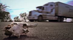 Skull on desert highway Stock Footage