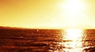 Scorching summer sun 8