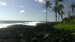 Hawaii, The big island Stock Footage