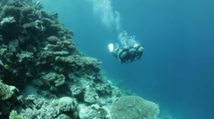 Buddy team diving along reef Stock Footage