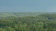 Rainy clouds over an dense forest Stock Footage