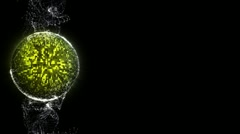 discoball particle 14 HD - stock footage