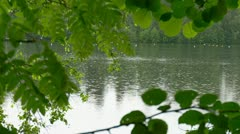 A view of a lake shore Stock Footage