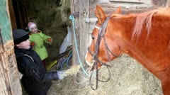 Boy feed horse, his sister give hay to horse Stock Footage