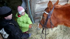 Boy and girl feed horse Stock Footage