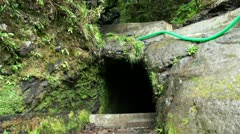 Levada tunnel in Madeira rainforest 20120225 125951 Stock Footage