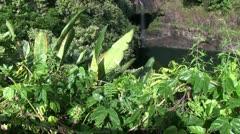 Hawaii, The big island Stock Footage