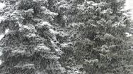 Blizzard Stock Footage