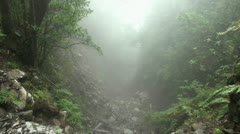 Clouds and fog in forest mountains 20120225 143640 Stock Footage