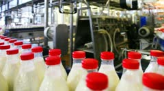 many bottles milk move wide conveyor belt at factory - stock footage