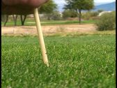 Playing golf V15 - PAL Stock Footage