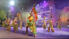 Carnival time! Carnival group with costumes during the Gran Gala - stock footage