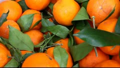 Fresh orange Stock Footage