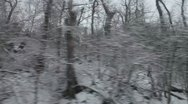 Stock Video Footage of Drive through winter forest