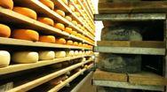 Blue cheese gouda Factory food process parmesan swiss dairy feta france milk Stock Footage