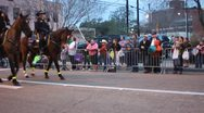 Mardi Gras Parade Police Horses Stock Footage